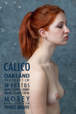 Calico California nude photography by craig morey