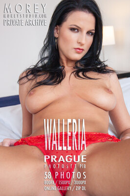 Walleria Prague erotic photography of nude models