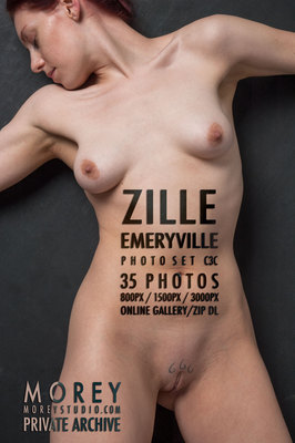 Zille California nude art gallery free previews